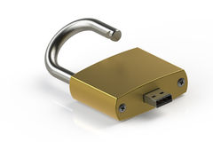 Lock with USB instead of Key. 3D Royalty Free Stock Photos