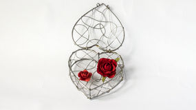 Lock Your Heart Concept, Single Abstract Curve Steel Container in Heart Like Shape with Paper Red Roses on White Background Royalty Free Stock Images
