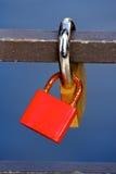 locked влюбленность padlocks совместно 2 Стоковые Фото