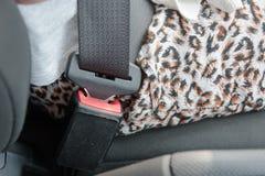 Locked car seatbelt stock images