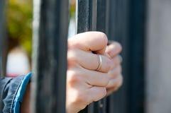 Locked gates Royalty Free Stock Image