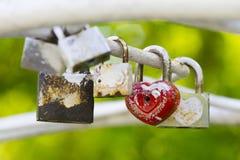 Locked padlocks over green Royalty Free Stock Photo