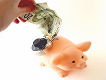 Locked piggy bank and cash Stock Photography