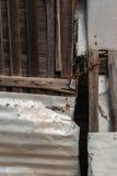 Locked Rustic Wood and Metal Doors Royalty Free Stock Photo