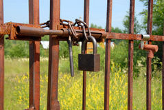 Locked rusty gate Royalty Free Stock Images