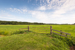 Locked rusty gate before a green meadow in summer season Royalty Free Stock Image