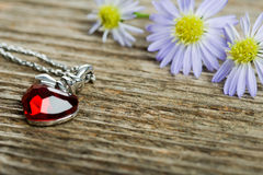 Locket and flowers Stock Images