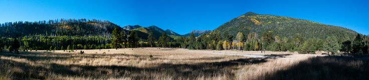Lockett Meadow Royalty Free Stock Images