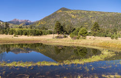 Lockett Meadow in Autumn. Lockett meadow and reflection near flagstaff arizona in autumn Royalty Free Stock Image