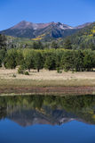 Lockett Meadow Reflection Royalty Free Stock Photos