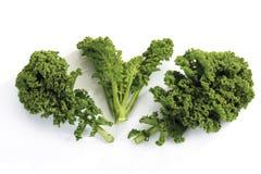 Lockig-blad grönkål Arkivbild