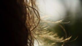 lockig hårkvinna stock video