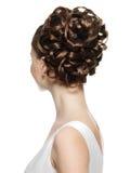 lockig kvinna för bakre sikt för frisyr Royaltyfri Fotografi