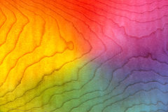 Lockig lönn för färgrik Wood bakgrundstextur, flammamodell som figureras Royaltyfri Fotografi