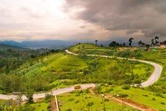 Lockige Straße mit grünem Feld in Nepal Lizenzfreie Stockfotografie
