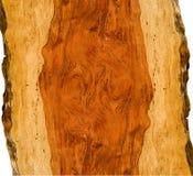 lockigt trä för bubinga Arkivfoto