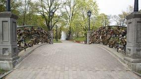 Locks on bridge of lovers Royalty Free Stock Photo