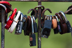 Locks on the fence Stock Photography
