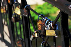 Locks fortunately and love. On the bridge Royalty Free Stock Photos