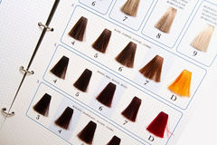 Locks of hair dyed in various shade Royalty Free Stock Photos