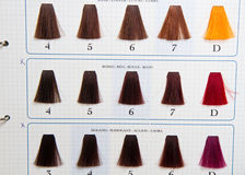 Locks of hair dyed in various shade Stock Photo