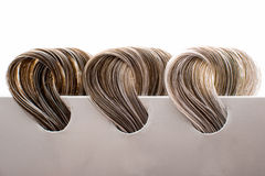 Locks of hair with gray Royalty Free Stock Image