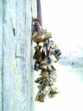 Locks of love. Locks on the bridge, tradition for people in love florence italy royalty free stock photo