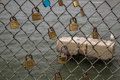 Locks with love and dedication messages on chain link fence Royalty Free Stock Photo