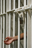 Lockup Stock Photography