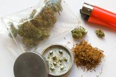 Loco da marijuana Imagem de Stock