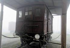Locobreke in the Fog Stock Image