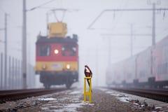 Locomotief op spoorweg Stock Fotografie