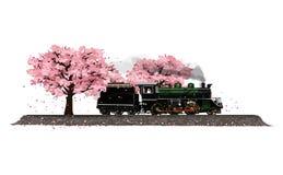 Locomotive à vapeur et fleurs Sakura Photos libres de droits