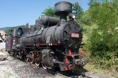 Locomotive of narrow gauge railway Stock Photography