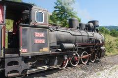 Locomotive of narrow gauge railway Stock Photos