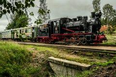 locomotora de vapor ferroviaria del Estrecho-indicador que conduce sobre un puente con passangers Fotos de archivo