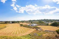 Locorotondo, Apulien - Landwirtschaft in der italienischen Region von trull stockbilder