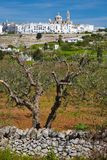 LOCOROTONDO. Puglia, Italy - View of the little picturesque village in south Italy Royalty Free Stock Image