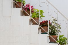LOCOROTONDO. Puglia, Italy - View of the picturesque little village in south Italy; detail of chairs decorated with colorful flowers Royalty Free Stock Photo