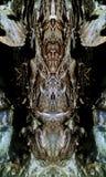 Locura pantanosa de la cala Fotografía de archivo libre de regalías