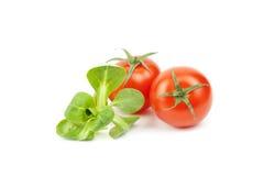 Locusta do Valerianella, salada de milho, tomate de cereja, a erva-benta Fotos de Stock