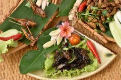 Locusta, Ensiferum e bachi da seta di Bombay, fritti Immagini Stock Libere da Diritti