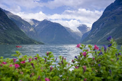 Lodalen Valley Royalty Free Stock Photos