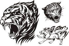 Lodernde große Katzen. Stockbild