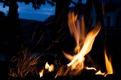 Loderndes Feuer Das Konzept der Natur Stockbild