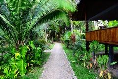 Lodge в джунглях Стоковая Фотография RF