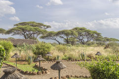 Lodge in Kenya. Safari camp in Kenya . Lamps and path . Mount Kilimanjaro is visible in the distance stock image