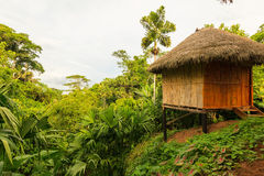 Lodge in the middle of the amazonian jungle, Yasuni  Wildlife Re Royalty Free Stock Photo