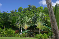 Lodge in tropical forest Royalty Free Stock Photography