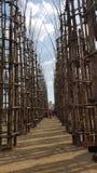 Lodi,吉乌利亚诺Mauri ` s Cattedrale Vegetale 库存照片